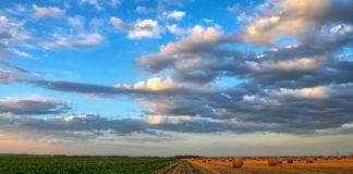 pola na wsi
